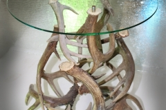 Antler Table 1